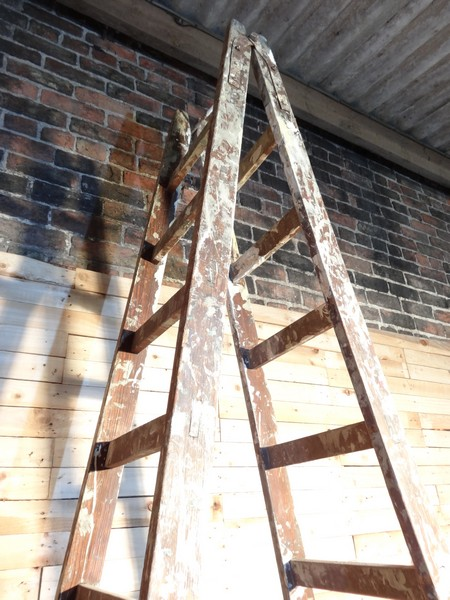 1900's French vintage fruit picking / painting ladder (B) (Price on request)